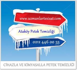 Ataköy Petek Temizliği  SERVİSİ
